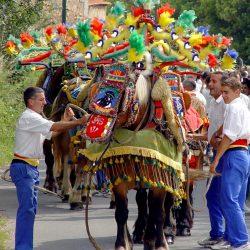 Carreto Ramado, chevaux richement harnachés